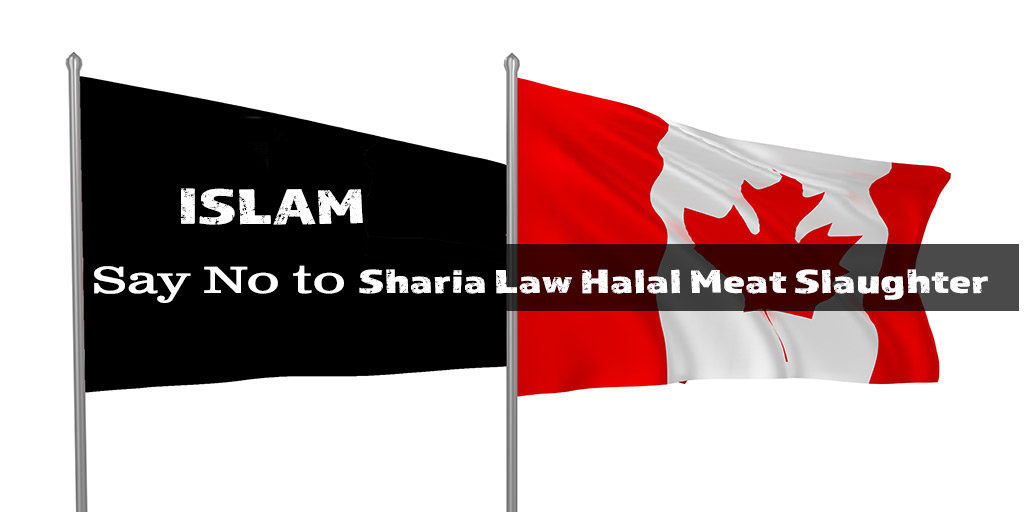 feature-image-islam-flag-1024x512.jpg