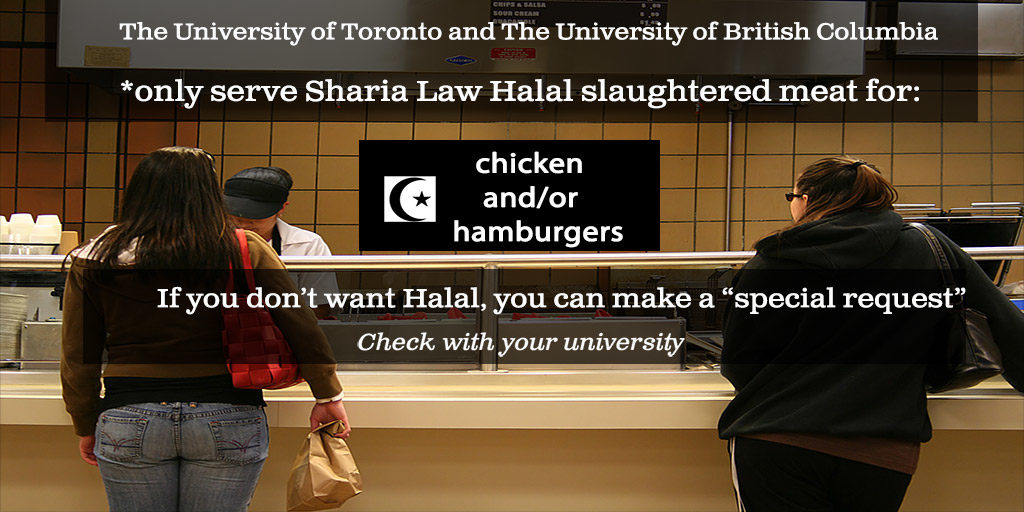 universities-public-istitions-halal-1024x512.jpg